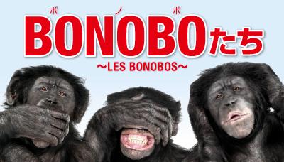 ボノボたち ~LES BONOBOS~